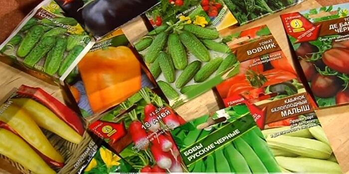 советы по покупке семян
