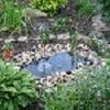 Особенности создания декоративного водоема на приусадебном участке